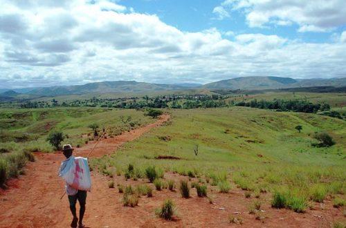 Article : Madagascar : Andrebabe, le village invisible et autres Mikea