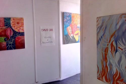 Exposition Tsinjo Dia au Tahala Rarihasina, photo Layandri