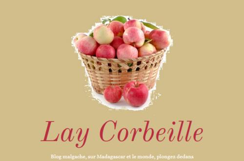 Article : Démenti : Lay Corbeille n'est pas Mamy Z. et ne fait pas campagne dans les élections