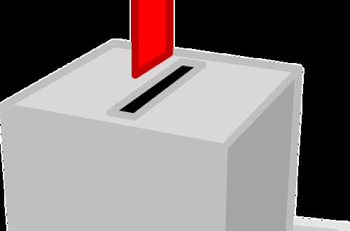 Article : Madagascar : j'ai quand même pu voter, puis j'ai compté les voix